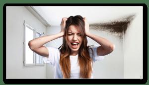 Problemi in casa con - Muffa - Condensa - Umidità - Cattivi odori